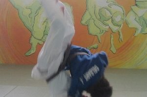 Permalien vers:Sport-Etudes Judo